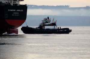 Brusco Tug & Barge's tractor tugboat, the Wynema Spirit, assists in docking the Diamond Jubilee at Terminal 3 on Thursday Morning. The Wynema Spirit offers 4,000HP, a fire protection system, a rotating propeller system and 101,000lbs of pushing and pulling capability.