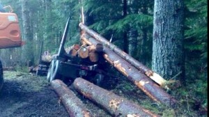 Hoquiam driver killed in log truck rollover accident