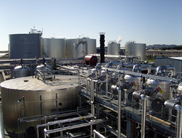 Imperium Renewables and Pacific Coast Canola sign contract for biofuel supply