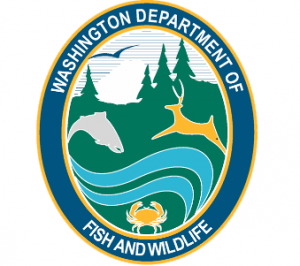 Public meeting provides forum on Grays Harbor salmon management