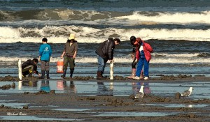 Proposed razor clam digs include March shift to morning tides