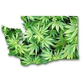 Grays Harbor County approves marijuana businesses, meets first business