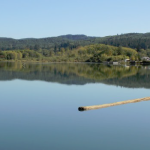 Friends Landing, a 501(c)(3), has requested the Port of Grays Harbor consider incorporating its 152 acre handicap accessible recreation facility, along with the 30-acre Sterling Landing site on the Wynoochee River, into the Port's property portfolio.