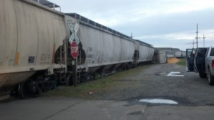 Train derails in Aberdeen, two grain cars spill, no injuries reported