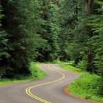 Olympic National Forest Seeks Input on Identifying a Sustainable Road System