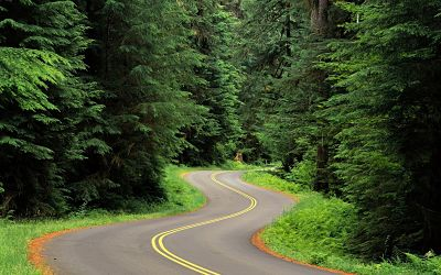 "Olympic National Forest asks ""Which roads are important to you?"""