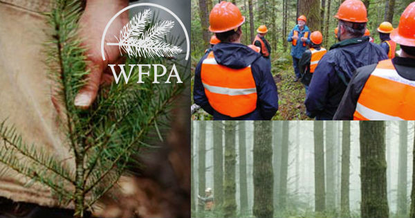 Washington Forest Protection Association