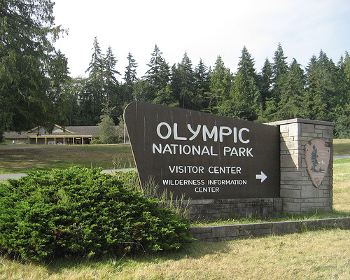 Family calls for help from Olympic National Forest