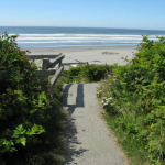 Trail to Kalaloch Beach
