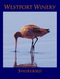 2013 Shorebird Poster