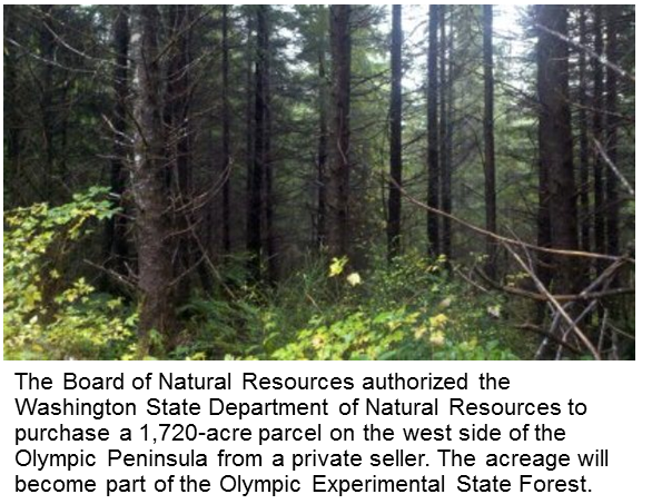DNR purchase on Olympic Peninsula adds to wildlife habitat and working forest