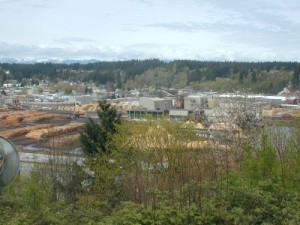 Sierra Pacific to buy, shut  down, then rebuild Shelton Mill