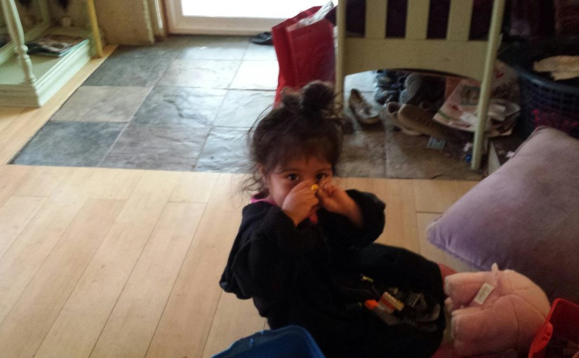 Belfair toddler returned home safe after she was found wandering several blocks away