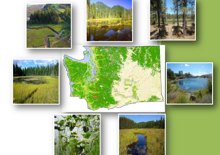 Final Washington State Wetland Program Plan is now available
