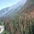 Paradise Fire burns over 1000 acres in Olympic National Park