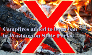 Campfires banned in Washington state parks until further notice