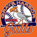 Grays Harbor Gulls games cancelled, Mount Rainier Pro Baseball League talks restructure