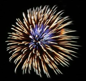 Fireworks and Calling 911; When is it appropriate