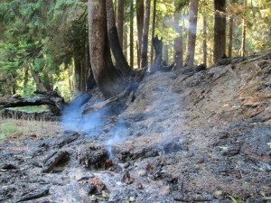 Paradise fire in Olympic National Park expected to last until fall rains, or heavy rains