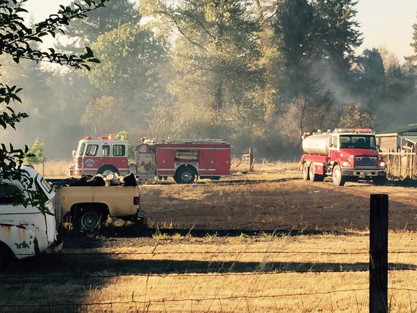 New wildfire burns at least 8 structures in Mason County