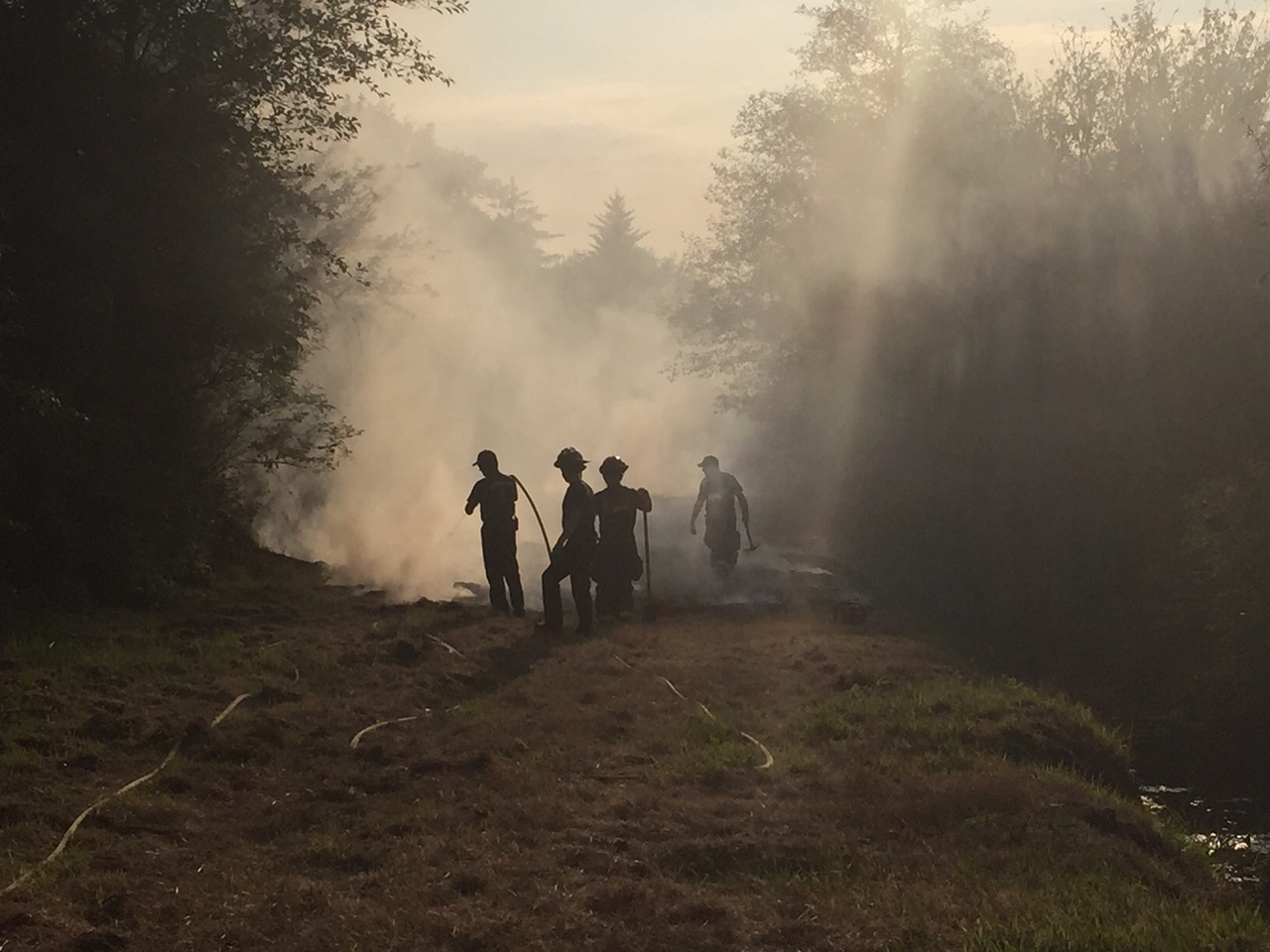 Brush fire in Aberdeen quickly extinguished